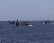 Yêu cầu Trung Quốc chấm dứt hành động vô nhân đạo với ngư dân Việt Nam