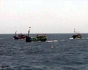 Ngư dân có thể vay không lãi suất đóng mới tàu thuyền ra khơi