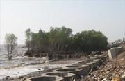 Sạt lở nặng tuyến đê bao vùng lũ tại Tiền Giang