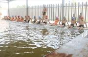 Thanh Trì quyết 'xóa mù' bơi cho học sinh
