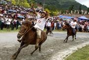 Trên 30.000 lượt khách xem đua ngựa Bắc Hà 2014