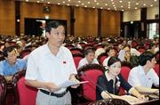 Kiến nghị bỏ đăng ký giữ quốc tịch Việt Nam