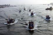 Ngư dân liên kết phát triển kinh tế biển