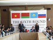 Việt Nam và Liên minh Hải quan kết thúc vòng 6 đàm phán FTA