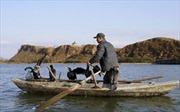 Hàn Quốc bắt một người Triều Tiên vượt biên