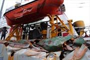 Hội Nghề cá Việt Nam yêu cầu Trung Quốc thả ngư dân
