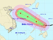 Hàng trăm nghìn người sơ tán do bão Rammasun