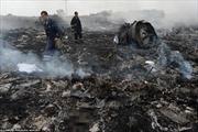 Hỗ trợ thân nhân 3 người Việt trong vụ máy bay rơi