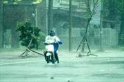 Bão số 2 gây gió mạnh và mưa lớn tại Quảng Ninh