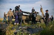Bắt đầu nhận dạng nạn nhân máy bay MH17