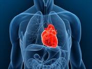 Ghép tim nhân tạo thành công cho trẻ vị thành niên