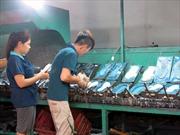 Phát triển công nghiệp hỗ trợ để chủ động hội nhập