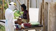 Tây Phi: Nguy cơ chết vì đói trước Ebola