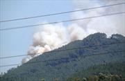 Liên tiếp xảy ra cháy rừng tại Nghệ An