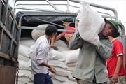 Hỗ trợ 100 tấn gạo cho tỉnh Vân Nam (Trung Quốc)