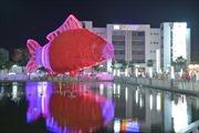 Xác lập kỷ lục đèn lồng cá chép lớn nhất Việt Nam