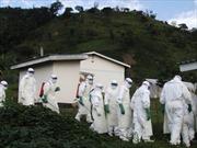 Dịch Ebola gây thiệt hại lớn về kinh tế