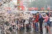 Lễ hội Việt Nam tại Nhật Bản gắn kết tình hữu nghị