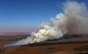 Phiến quân Syria chiếm cửa khẩu biên giới với Israel