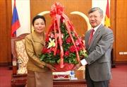Lào chúc mừng Quốc khánh lần thứ 69 của Việt Nam