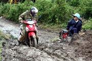 Lại xảy ra trượt lở đất ở Di Linh