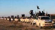 Ngoại trưởng các nước họp khẩn về IS