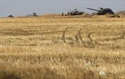 Vùng phi quân sự Đông Ukraine chia thành 5 khu vực