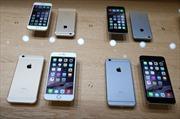 Apple thắng đậm với iPhone 6 và 6+