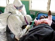 LHQ họp cấp cao về dịch Ebola