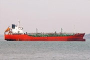 Xác minh, tìm kiếm thông tin về tàu Sunrise 689 cùng 18 thuyền viên mất liên lạc trên biển