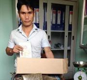 Phát hiện cần sa khô giấu trong xe nhập cảnh Việt Nam