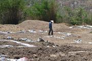 Dân khổ do ô nhiễm môi trường từ bã sắn