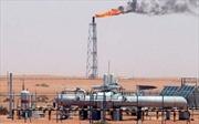 Saudi Arabia có đủ sức lũng đoạn giá dầu?
