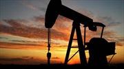 Thị trường dầu mỏ 'điêu đứng' vì quyết định của OPEC