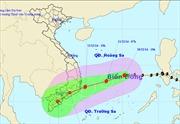 Tin bão khẩn cấp - cơn bão số 5