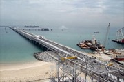 OPEC nghi giá dầu giảm mạnh do đầu cơ