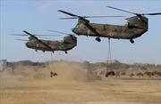 Sự trỗi dậy của lực lượng Thủy quân lục chiến tại châu Á-Kỳ cuối