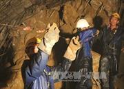 Thêm phương án giải cứu nạn nhân vụ sập hầm Lâm Đồng