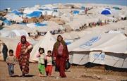 HĐBA gia hạn nghị quyết cứu trợ cho Syria