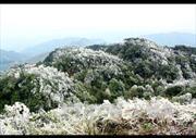 Vùng núi phía Bắc có băng giá và sương muối