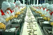 Hướng tới sản phẩm quốc tế thương hiệu Việt