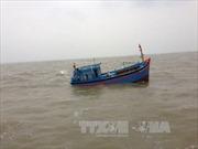 Một tàu cá mất tích trên biển Quỳnh Lưu, Nghệ An