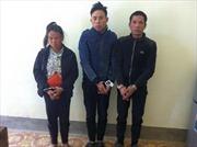 Bắt 3 đối tượng vận chuyển ma túy từ Lào vào Việt Nam