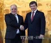 Iraq, Thổ Nhĩ Kỳ cam kết hợp tác chống IS