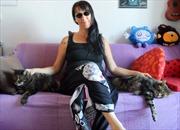 Phụ nữ ngũ tuần gây sốc khi kết hôn với 2 chú mèo