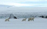 Nga kêu gọi không gây xung đột ở Bắc Cực