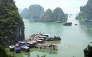 Du lịch Việt Nam đẩy mạnh phát triển trên sân nhà