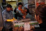 Phát hiện ca nhiễm virus H7N9 ở người tại Trung Quốc