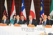 'Mẫu số chung' trong quan hệ kinh tế Việt Nam – Hoa Kỳ