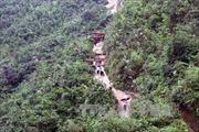 'Nóng' tình trạng phá rừng tại Kon Tum